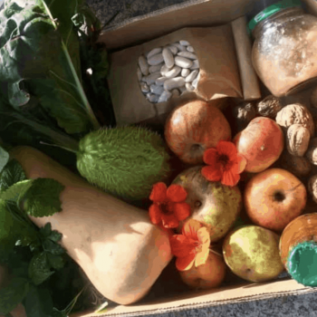 What is Permaculture Design? Another view