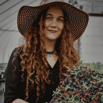 Top 20+ Best permaculture books by women