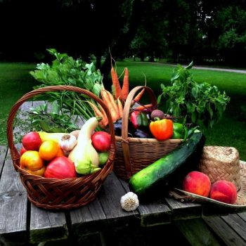Eat With The Seasons: basics of food preservation
