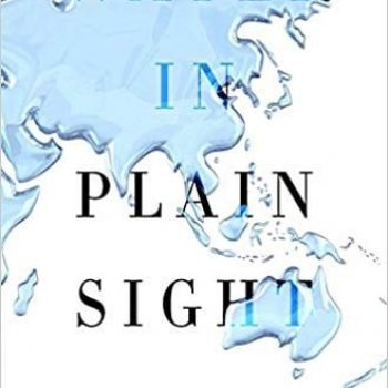 Book Review: Water in Plain Sight by Judith D Schwartz