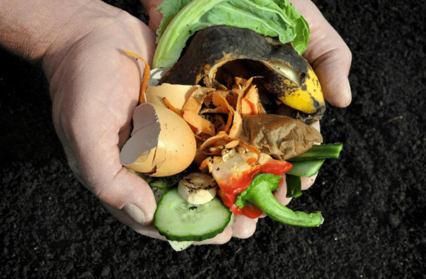 In-Situ Composting in Your Garden