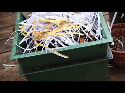 Maintaining your worm bin's pH