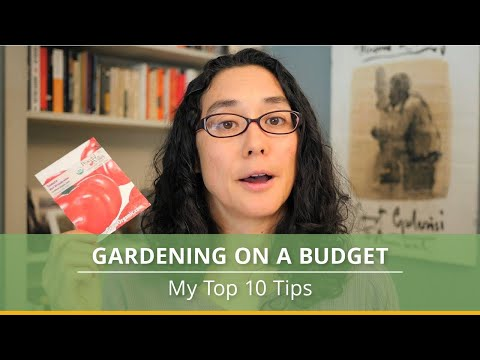 10 Tips for Gardening on a Budget