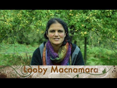 What is Cultural Emergence? Looby Macnamara