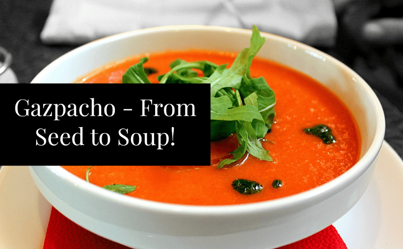 How to make gazpacho from homegrown tomatoes