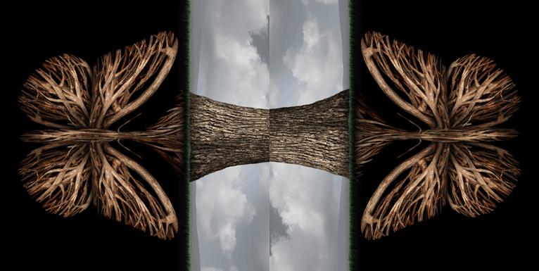 image 84