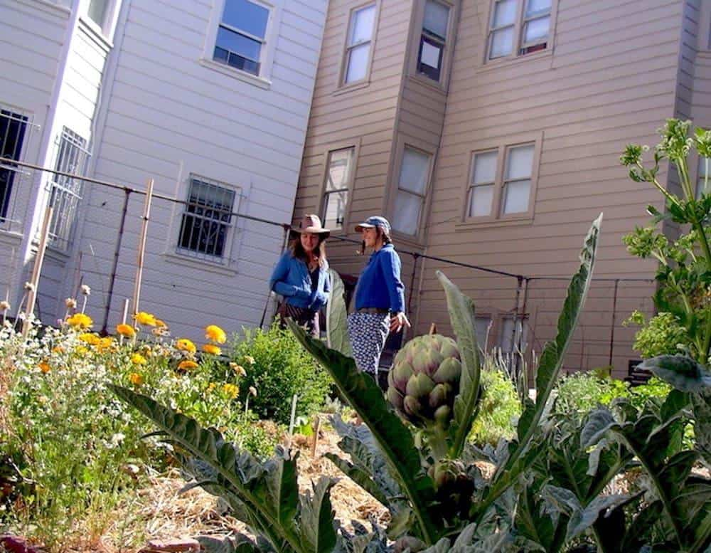 Permaculture For Renters