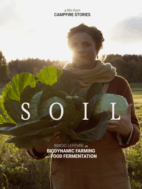 Opening a heartfelt dialogue with life-A film review of Into The Soil