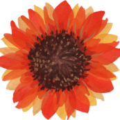 watercolor sunflower 5 2